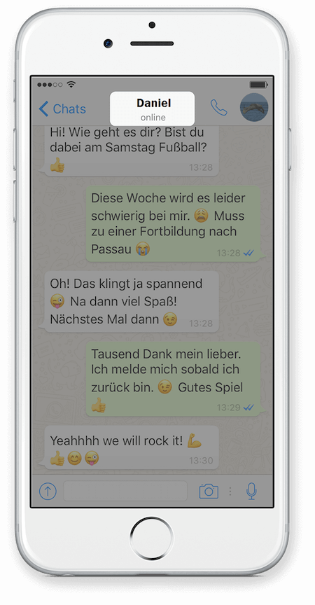 WhatsApp Chat Export via iCloud für iPhone Schritt 2