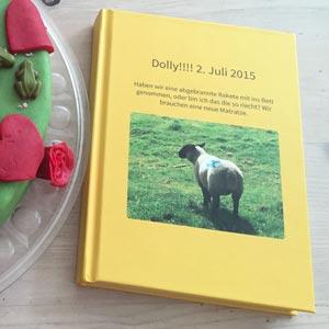 zapptales Kundenerfahrungen Das zapptales Buch von Kathrin